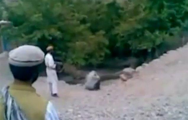 Posnetek javne usmrtitve afganistanske ženske, ki v zadnjih dneh kroži po spletu, je šokiral mednarodno javnost. Obsodbe krutega dogodka dežujejo z vseh strani.
