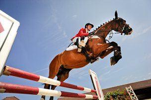 50-konjska vprega proti samotnemu jezdecu