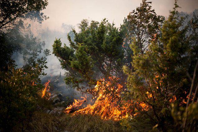 V bližini Trogirja na Hrvaškem je v petek zvečer izbruhnil velik požar, ki so ga gasilci že nadzorovali, a so se ognjeni zublji ponovno razplamteli.