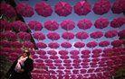Rožnato nebo. Foto: Reuters
