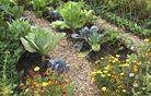 Kako izdelati načrt za vrt?