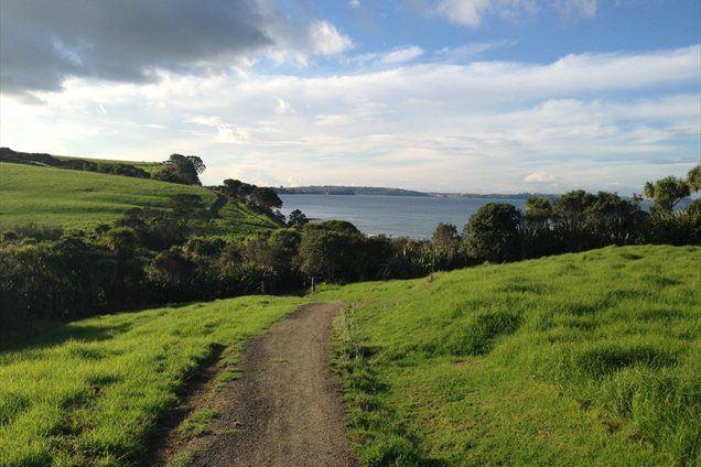 Nova Zelandija ima tudi temno plat, kot pravi Matej, je tam ogromno kraj in drugega kriminala.