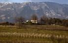 Top gostilne 2014 – Kras, Vipavska dolina in Brkini