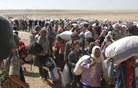 Tisoče Kurdov pred nasiljem Islamske države iz Sirije beži v Turčijo