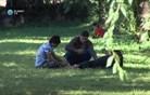 Begunci tudi ob slovenski meji (video)