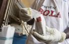 Zaradi ebole umrl še tretji sodelavec ZN, bolezni podleglo 70 odstotkov okuženih
