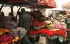 Kako so inšpektorji na ljubljanski tržnici nadzorovali cvetličarje in prodajalce sveč? (video)