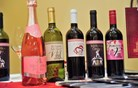 Letos že 17. Slovenski festival vin