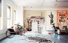Dom profesionalnega skejterja, ki ljubi sodobno umetnost (foto)