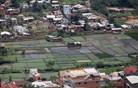 Kuga na Madagaskarju zahtevala najmanj 40 življenj