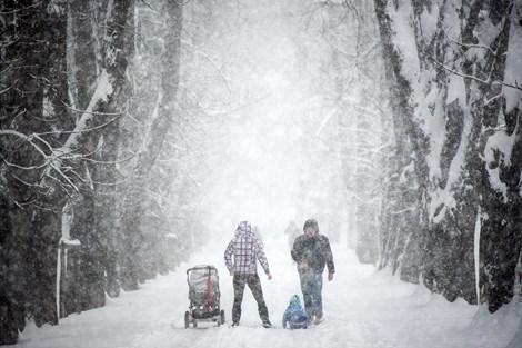 Prihajajo še bolj ostre zime